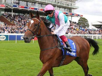 Ngựa đua Enable không thể tạo lịch sử