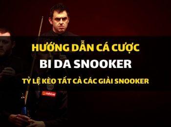 Dafabet hướng dẫn cá cược: Kèo cá độ bi-da snooker các giải đấu Thế giới