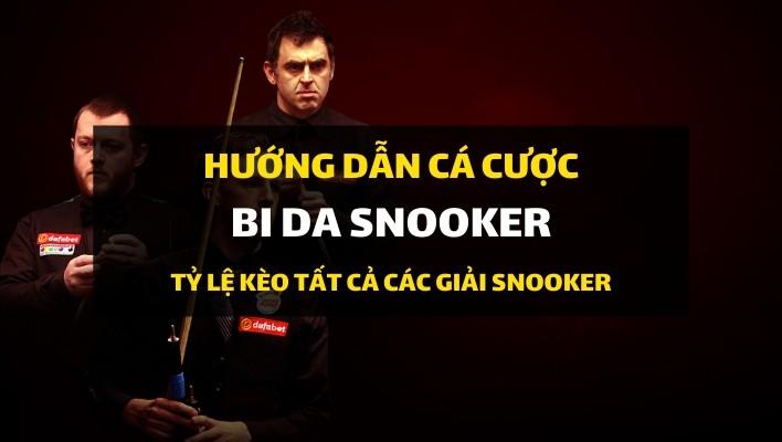 dafabet-huong-dan-ca-cuoc-bida-snooker