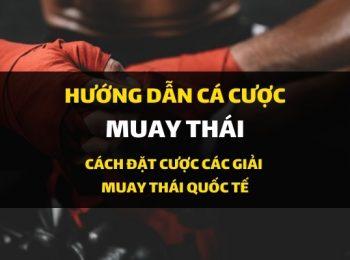 Dafabet hướng dẫn cá cược: Kèo Muay Thái – Đặt cược võ thuật