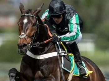 Altior bị loại khỏi giải đua ngựa Kempton